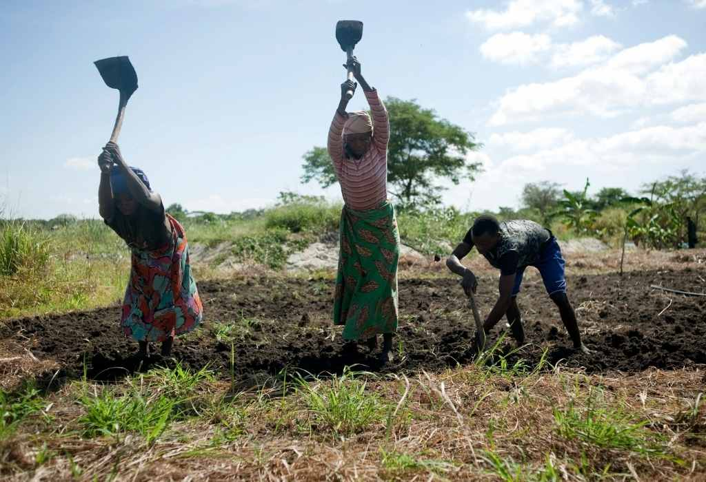 mozambico agricoltura sostenibile